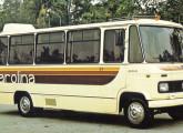 Micro-ônibus Carolina.