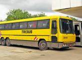 Tribus III, lançado em 1989; na imagem, um carro da Itapemirim e outro da Penha, fotografados em 2008 na BR-101/ES (foto: LEXICAR).
