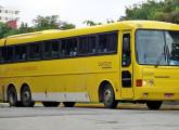 Tribus IV, fotografado em São Paulo em 2008 (foto: Fábio Barbano).
